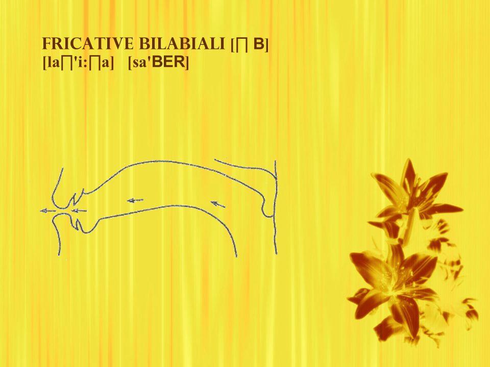 Fricative bilabiali [∏ B] [la∏ i:∏a] [sa BER]